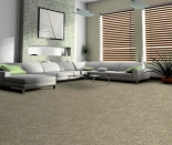 beaulieu-nyluxe-carpet-edmonton-1
