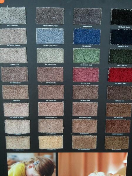 Mohawk Famous Fair Carpet: Perfect Choice for Rental Properties